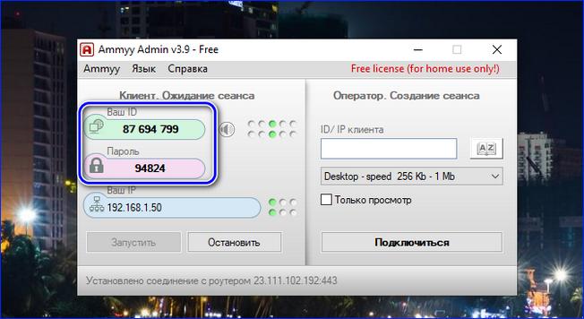 Копирование данных подключения в Ammy Admin