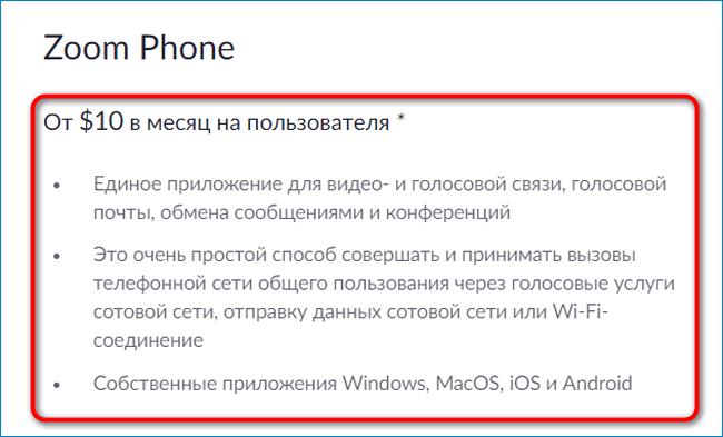 Телефон Zoom