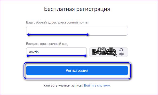 Ввод email и проверочного кода Zoom