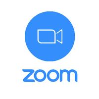 zoom лого